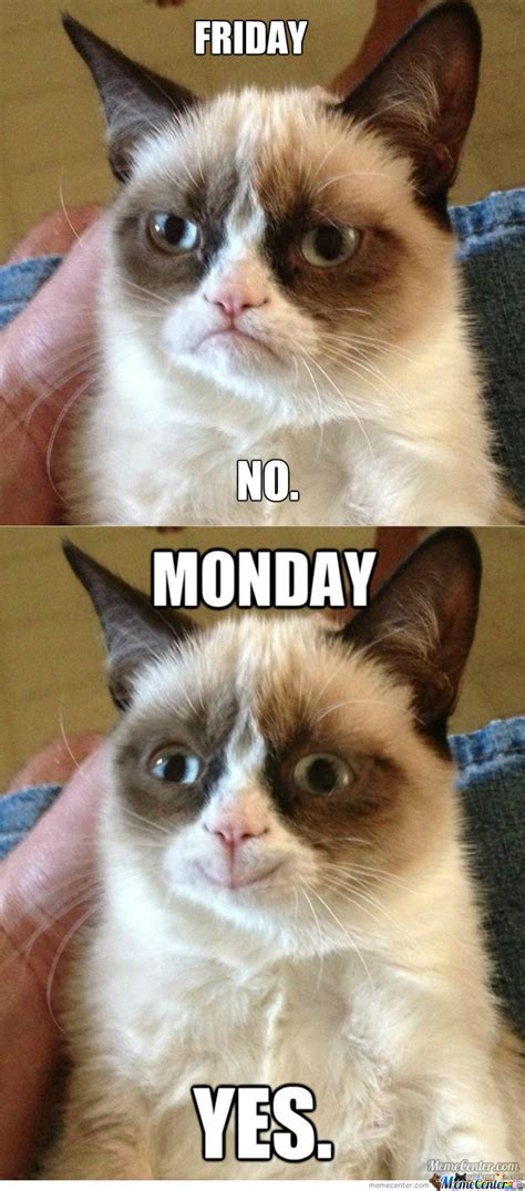 Grumpy Cat Monday Meme - grumpy cat loves mondays by superfred3 meme center