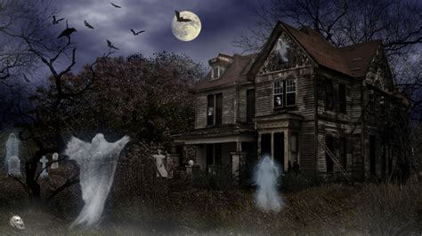 haunted house tours haunted house sydney investigation ghost tours
