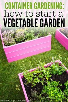 how to start a container garden 1000 images about for the home on declutter