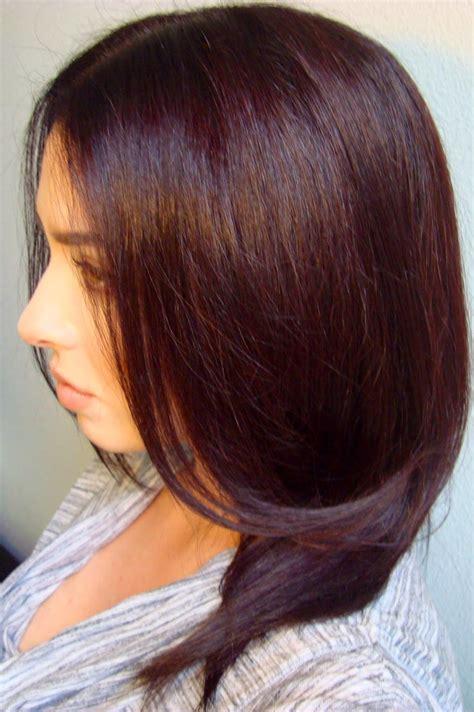 sallys hair color brown hairs chocolate mahogany hair colour hairstyles