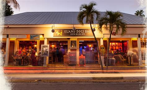 top bars in key west key west bars island dogs rated among the best bars in