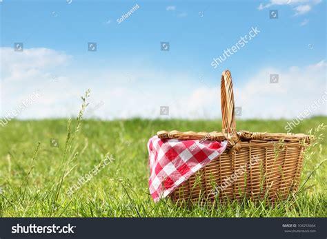 backyard picnic outdoor picnic sunny day stock photo 104253464 shutterstock