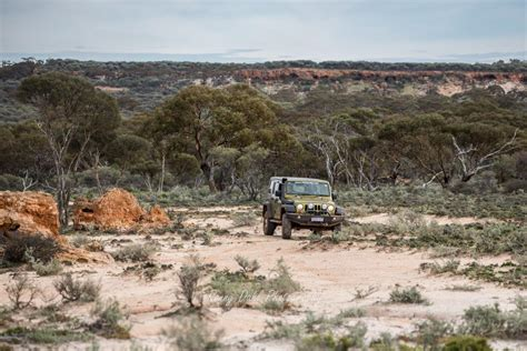 australian outback jeep outback experience wildflower season a 3 day adventure