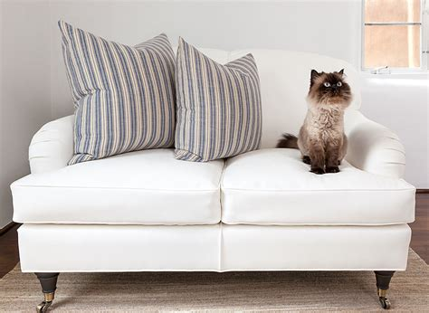 leather couch cat scratch how to avoid repair cat scratches on your leather sofa