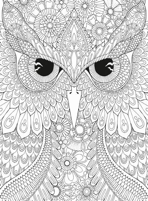 printable owl puzzle owl coloring puzzle puzzlewarehouse com