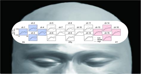 the lateralized brain the neuroscience and evolution of hemispheric asymmetries books frontiers lateralized frontal activity for japanese