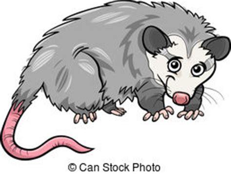 opossum clipart opossum clipart and stock illustrations 149 opossum