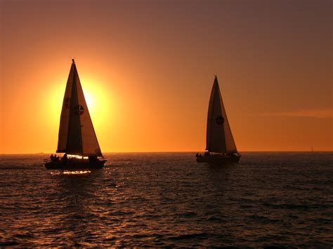 fishing boat tours san diego sail san diego sailing whale watching fishing charters