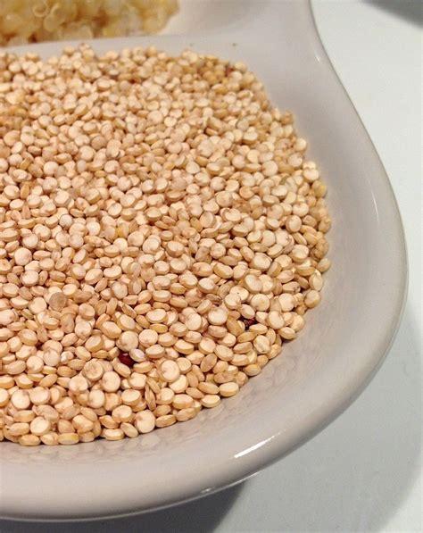 come si cucina la quinoa quinoa cos 232 le sue propriet 224 curiosit 224 e come si cucina