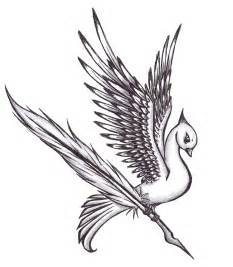 feather birds drawing images