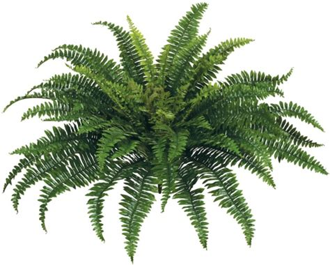How To Decorate Small Home Artificial Boston Fern Faux Plants
