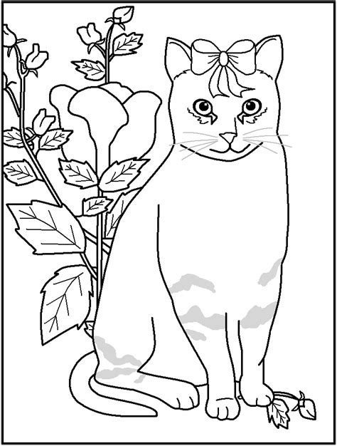 printable coloring pages for young adults free printable cat coloring pages great for kids