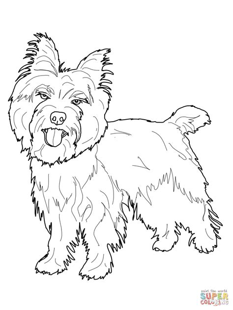 Cairn Terrier Coloring Online Super Coloring Terrier Coloring Pages