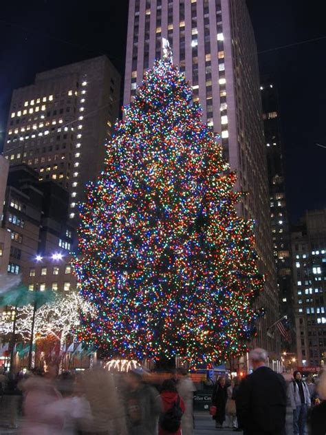 new york city daily photo rockefeller christmas tree