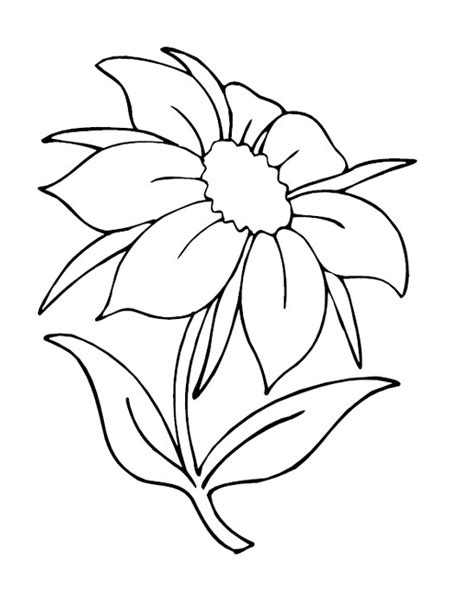 printable flowers coloring pages coloring