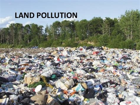 Where Can I Dump A by Land Pollution
