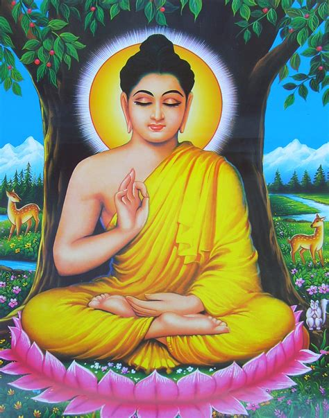 The Of Buddha buddha and the 3 types of students meditation