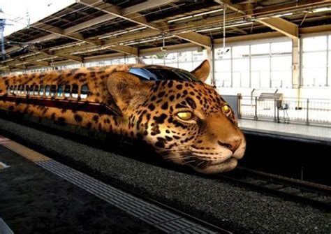 191 hay algo mas rapido que un guepardo liverpool es parte de mi vida tren guepardo