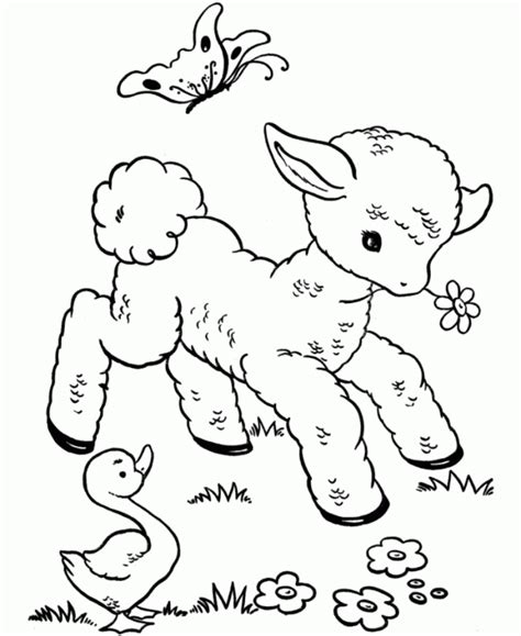printable coloring pages of baby animals cute coloring pages of animals coloring home