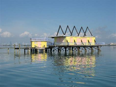 Environmentally Friendly Houses by Stilt House In Biscayne Bay Picture Of Ocean Force