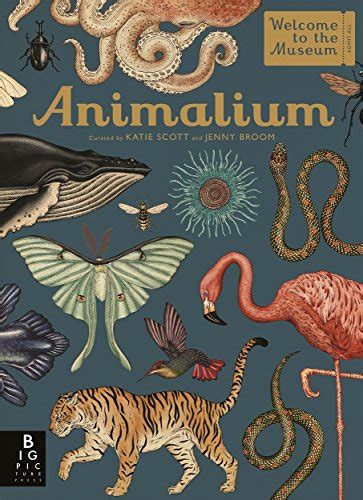 animalium welcome to the jenny broom author profile news books and speaking inquiries