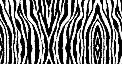zebra pattern css zebra skulls backgrounds twitter myspace backgrounds