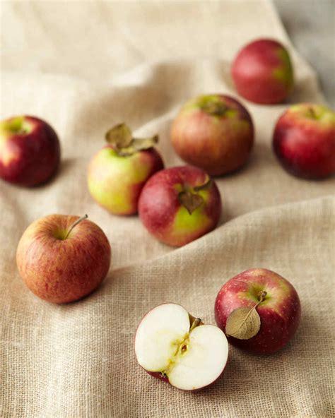 apple recipe apple recipes martha stewart