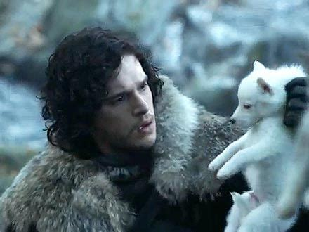 felpudo wikipedia jon snow and his direwolf ghost you win or you die