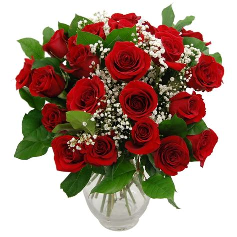 Good Type Of Christmas Trees #9: Promise-red-roses-1.jpg