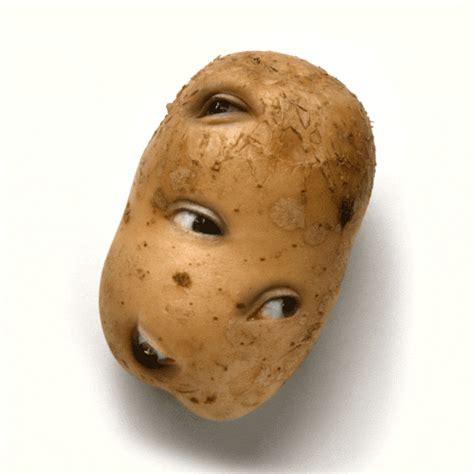 pomme de si鑒e social pomme de terre patate avec des yeux image gif