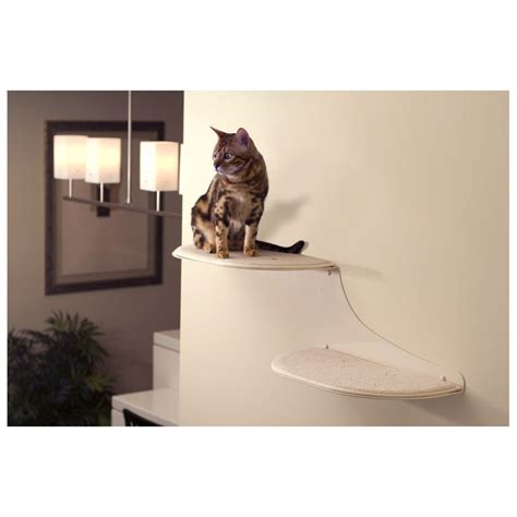 cat wall shelves climbing 34 best pin2win images on cat furniture cat