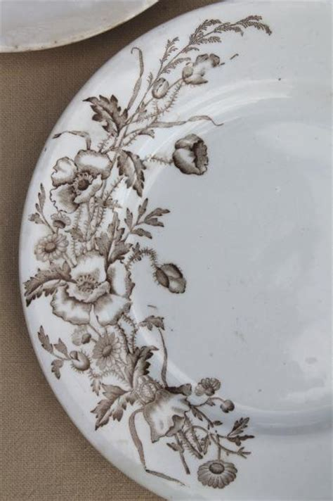 meakin essex antique brown transferware ironstone china plates poppies wildflowers
