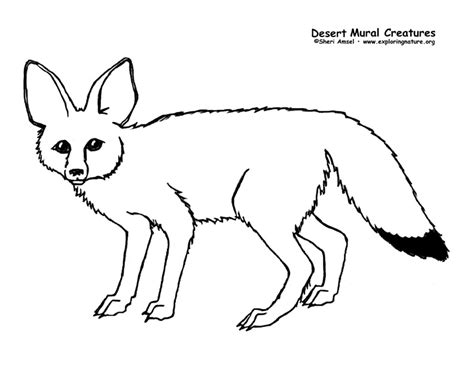 swift fox coloring page desert habitat mural