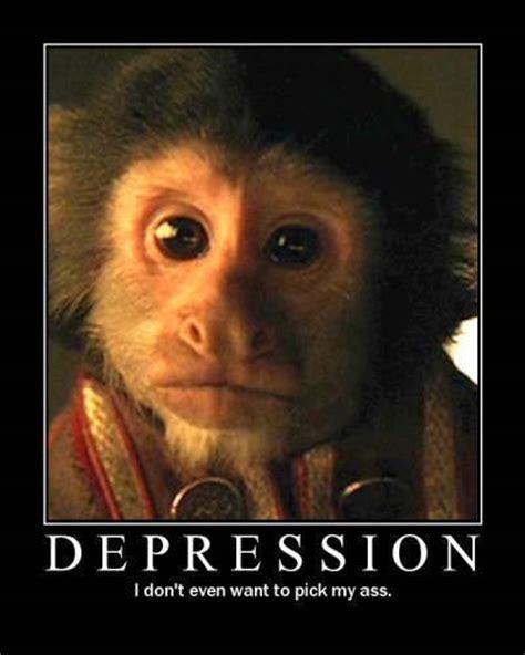 Antidepressant Meme - monkey funny depression punjabigraphics com