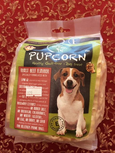 popcorn for dogs 75 best images about dogs as popcorn on chihuahuas for dogs and puppys