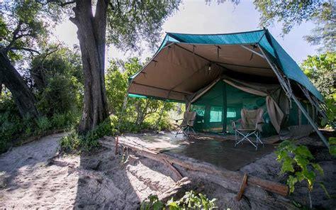 bushman plains camp hotel review botswana travel