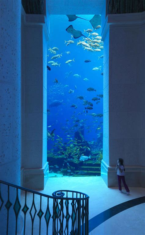 posiedon undersea resort 1 top 5 underwater resorts 4 amazing underwater hotels you need to stay in