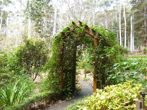 Mt Tamborine Botanical Gardens Perennial Garden Tamborine Mountain Botanic Gardens