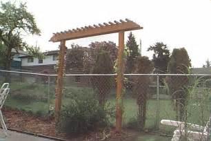 my project grape arbor plans