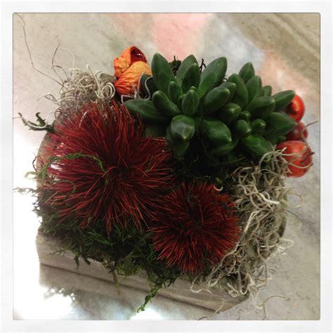 piante e fiori on line fiori e piante on line fiori regalo vendita e piante