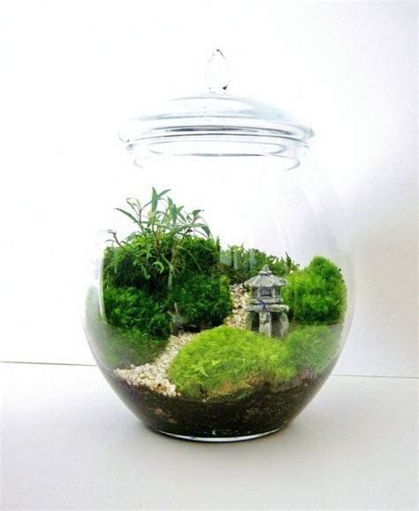 Handmade Terrariums - diy terrarium ideas