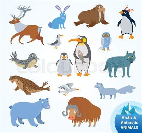 set funny arctic  antarctic stock vector colourbox