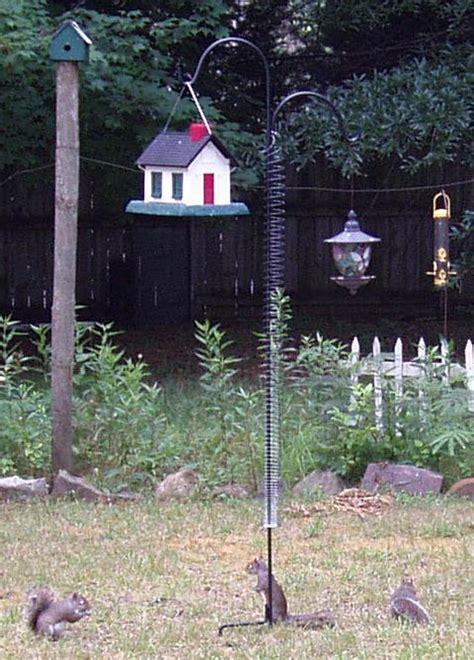keep squirrels out of bird feeders bird feedersbird feeders