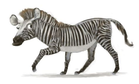 zebra pattern illustrator tutorial 27 best images about creature design zebras on pinterest
