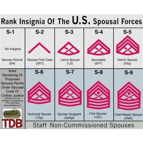 Military Spouse Meme - rank insignia of the u s spousal forces