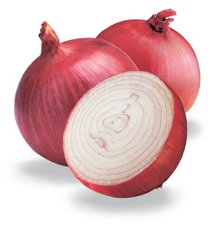 on ion health benefits of onions rasta health