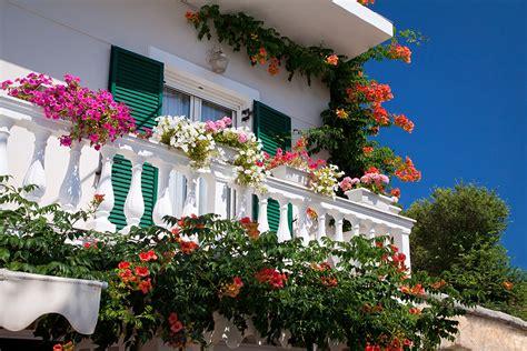 fiori da balcone estivi fiori estivi da giardino e balconi soleggiati gesal it