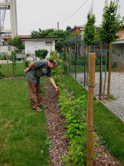 giardino alzheimer giardino alzheimer studio carminati