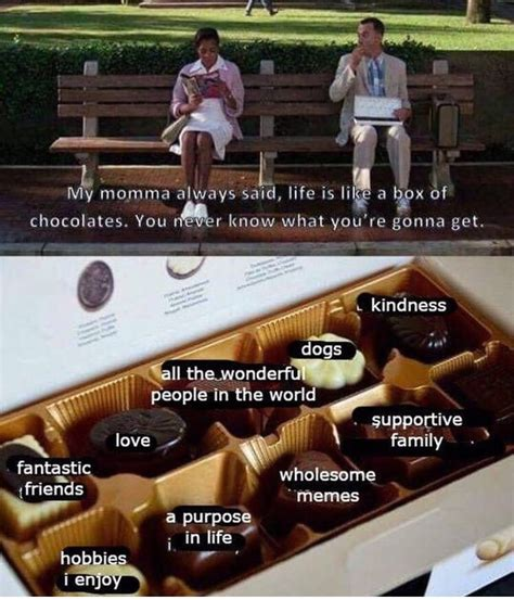 life    box  chocolates wholesomememes