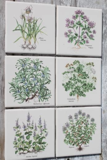 Vintage Kitchen Backsplash ceramic kitchen tiles w botanical herb prints of culinary